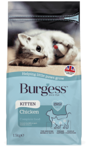 Kitten Chicken