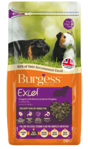 Excel Guinea Pig Nuggets with Blackcurrant & Oregano