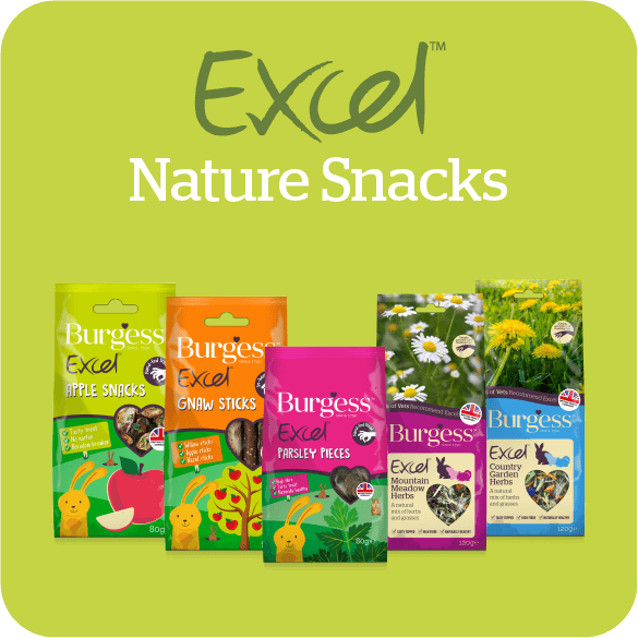excel-nature-snacks