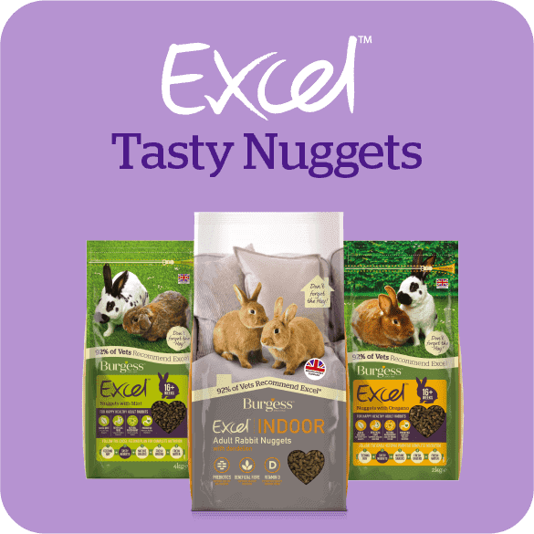 excel-tasty-nuggets