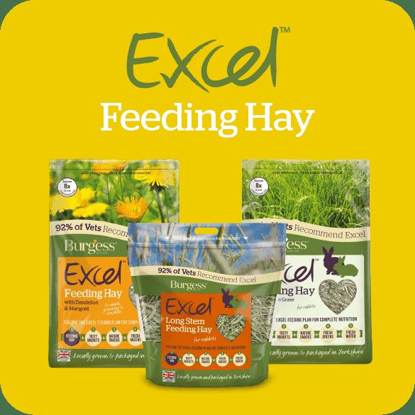 excel-feeding-hay
