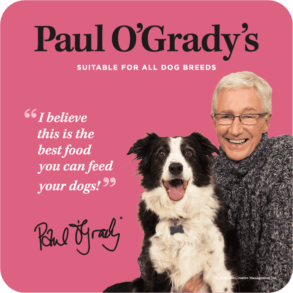 Paul-O'Grady-Dog_Food